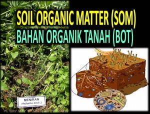 Soil Organic Matter (Bahan Organik Tanah)